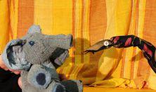 A kíváncsi kiselefánt & A sünteknős