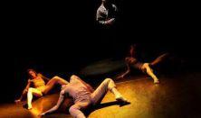 Szigorúan ellenőrzött vágyak - A Grecsó-fivérek pódiumestje