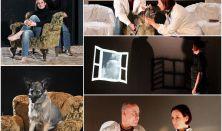 Spirit Színház: A karnevál vége - Popper Péter  könyvek színpadon