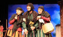 A rátóti csikótojás (Turay Ida Színház)