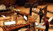 Az Amadinda és a Ju Percussion Group / CAFe Budapest 2014