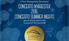 Concerto nyárestek I.