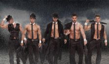 Hot Men Dance Show