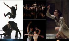 Ki vagy te, kortárs tánc? - Közép-Európa Táncszínház