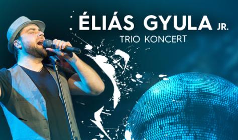 Éliás Gyula Jr koncert