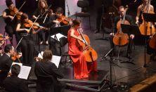 Szenthelyi Nap Négy koncert egy napon