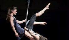 Grotesque Gimnastics: IV. em. 14.