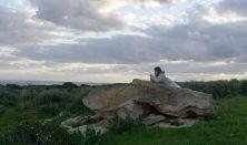 BIDF - Lángoló tenger/Fuoccoammare