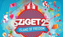 Sziget Fesztivál  / 4. NAPIJEGY - Aug. 14.