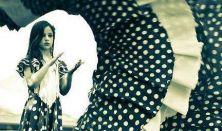 A flamenco ezer arca – jótékonysági est