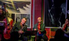 Dresch Vonós Quartet, Söndörgő koncertek