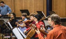 ZAJONGÓ III. Cindercella – zenés mesejáték (koncert gyerekeknek 8-14 éves korig)