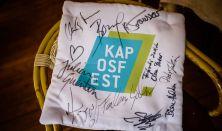 Kaposfest 2017/08/16 este