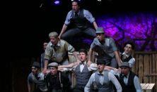 A Pál utcai fiúk - Pannon Várszínház