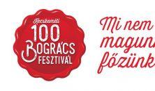 100 Bogrács Fesztivál / Vasárnapi napijegy