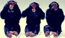 Terminál Workhouse: Isten hozott a majomházban!