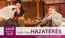 Harold Pinter: HAZATÉRÉS