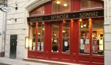 Spinoza film-klub: Életvonat