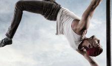Recirquel Újcirkusz Társulat: A légtornász egy napja – Új a cirkusz / MATINÉKONCERTEK - MŰHELYTITKOK