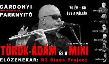 Török Ádám és a Mini együttes