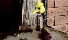 MU Terminál: Pinokkió Cirkuszi Meséje