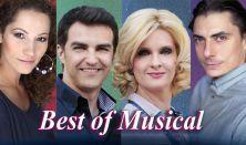 Best of Musical:Dolhai Attila, Janza Kata Vágó Bernadett, Szabó P. Szilveszter zenekaros nagykoncert