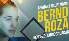 Bernd Róza
