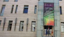 Frankestein - színházi eladás