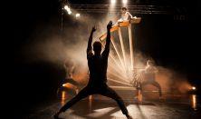 Loser´s Cirque Company: Walls and Handbags  (Česko)