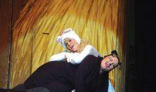Frakk, a macskák réme - Fogi színház