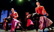 Hungarythm - A tánc életre kelt