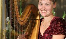 A hárfa sokszínűsége, Hangszerbemutató koncert gyerekeknek