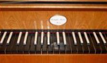 Takács Szilvia - fortepiano
