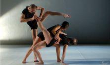 Danse Macabre - Gergye Krisztián Társulat és Közép-Európa Táncszínház