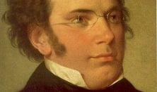 Schubert kamaraest