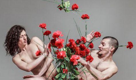 Radioballet: A szerelem természete