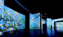 Van Gogh Alive kiállítás (hétfő)