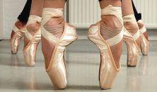 Végzős balett évf. képesítő vizsga bemutató