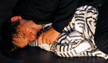 HTMSZ '14 A fiú Nagyvárad
