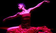 Egy rózsa hangjai - VI. Nemzetközi Monotánc Fesztivál