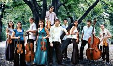 Concerto Armonico Budapest