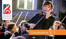 Gaudeamus bérlet V/1.