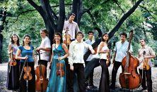 C. P. E. Bach 300 - Concerto Armonico Budapest - Billentyűs párbaj