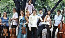 Concerto Armonico - Apa és fia zenéje a Bach-dinasztiából - Régizene Fesztivál