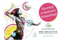 Röplabda Magyar Kupa Döntő