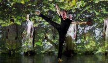 Balettmesék – Bartók: A fából faragott királyfi