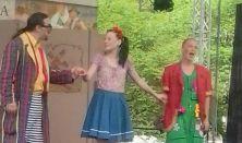 Panni és az álommanók, zenés mesejáték