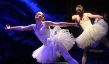 Hattyúcskák tava - Pannon Várszínház