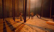 Vitéz lélek - a budapesti Nemzeti Színház vendégjátéka