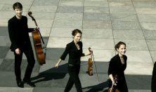 Armida Quartet - Rising Stars